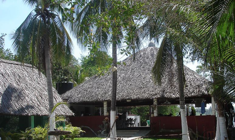 The palapa at Coconut Lagoon